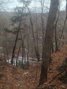 View of ice covered Rocky River :)  Kind of...haha